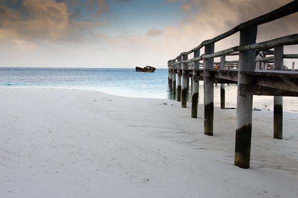 Heron Island by dvdrew
