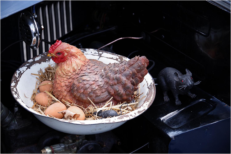 Big Hen, Eggs and a Rat