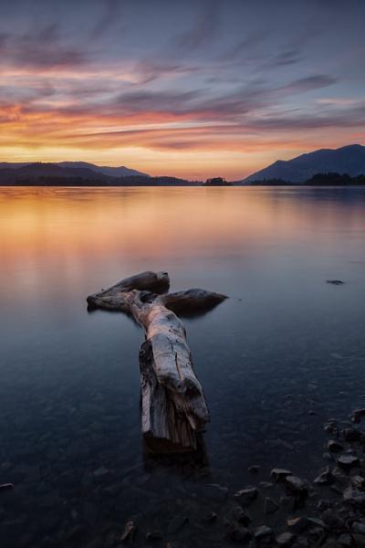 Derwent Driftwood by tolle13