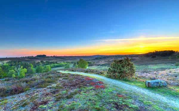 Dawn Path by NickLucas