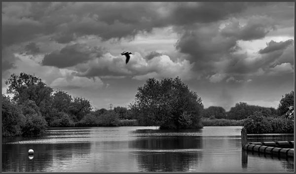 Flypast by AlfieK