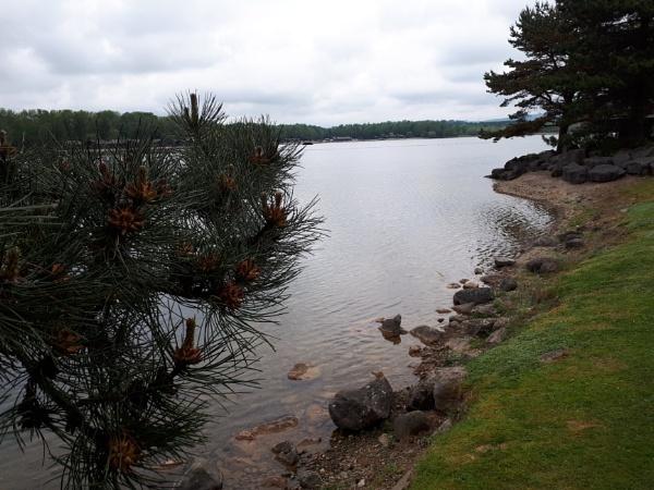 Lakeside veiw by Alan26