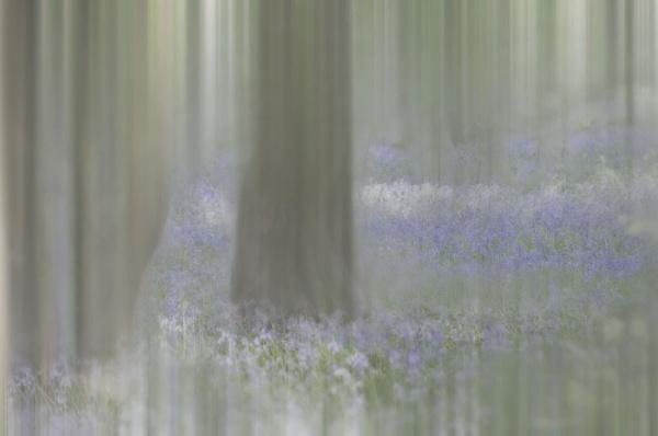 A hint of blue by MAK2