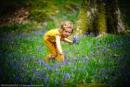 Woodland Wonder by dathersmith