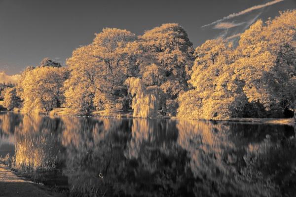 Dalswinton Loch by elmer1
