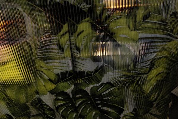 Deep Dark Jungle by RLF