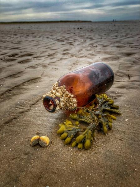 Bottle of barnacles