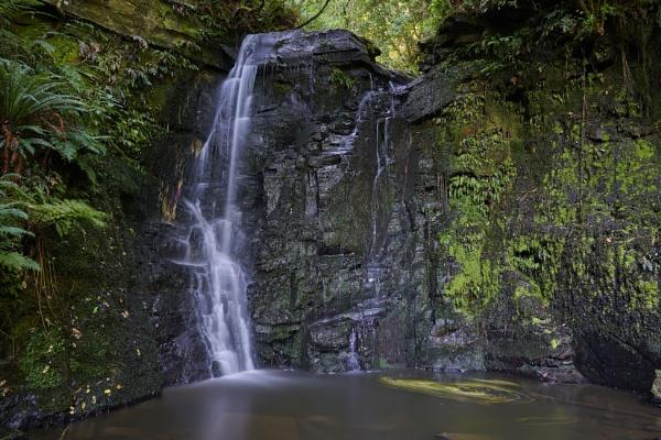 Horseshoe Falls, The Catlins, New Zealand by Lance_B