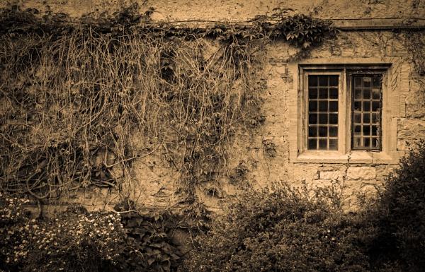 Lacock Abbey - Detail by AllistairK