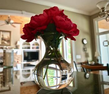 Knockout roses in a vase