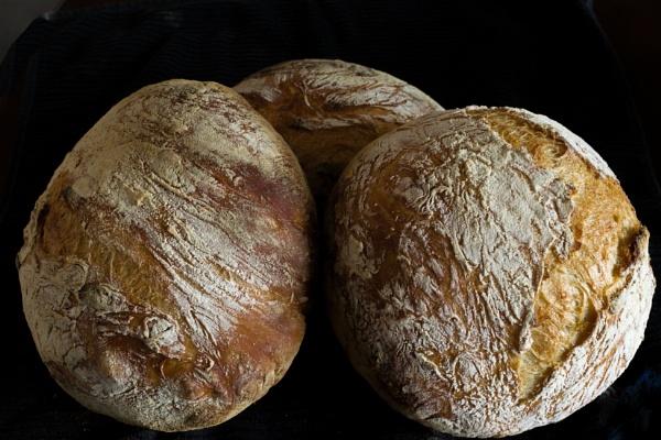 Homemade Bread Goes Global by BobbyMS