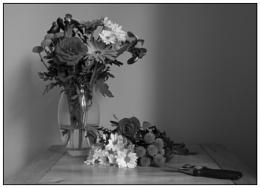 Photo : Floristry