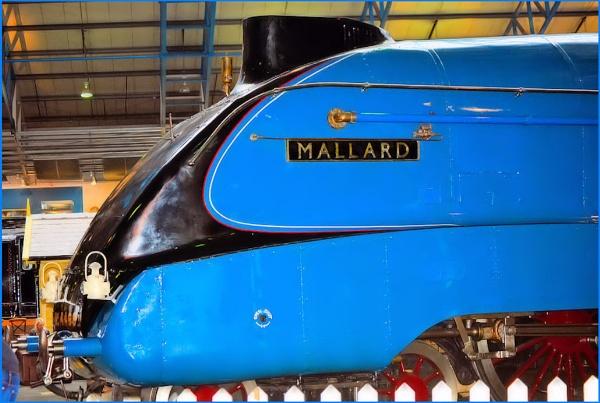 The  Streamlined Mallard by Rock