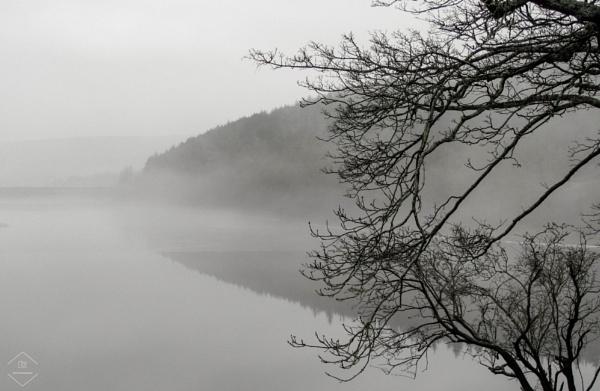 Rolling Mist by Jodyw17