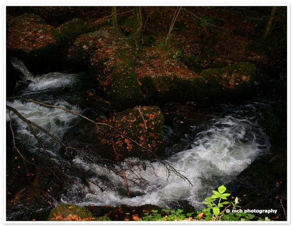 Rocks & Water by shell68