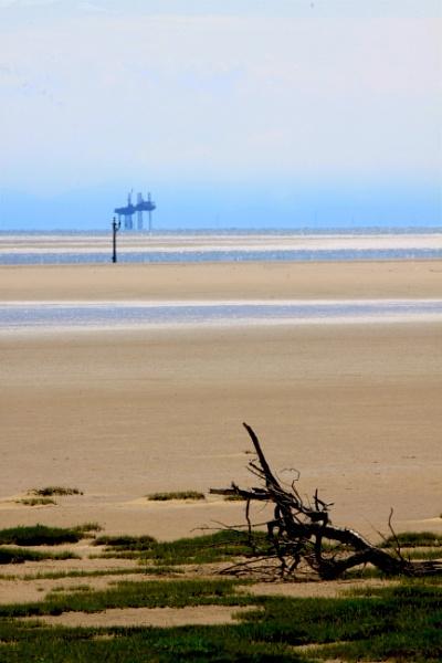 low tide by felixdcat