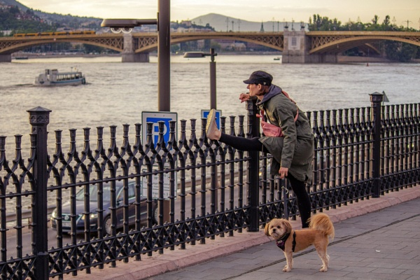 Evening in Budapest by ViVla