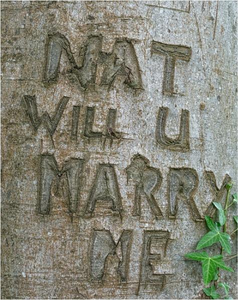 Nat will U marry me. by franken