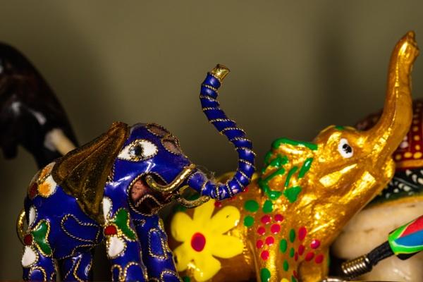 Elephants by Merlin_k