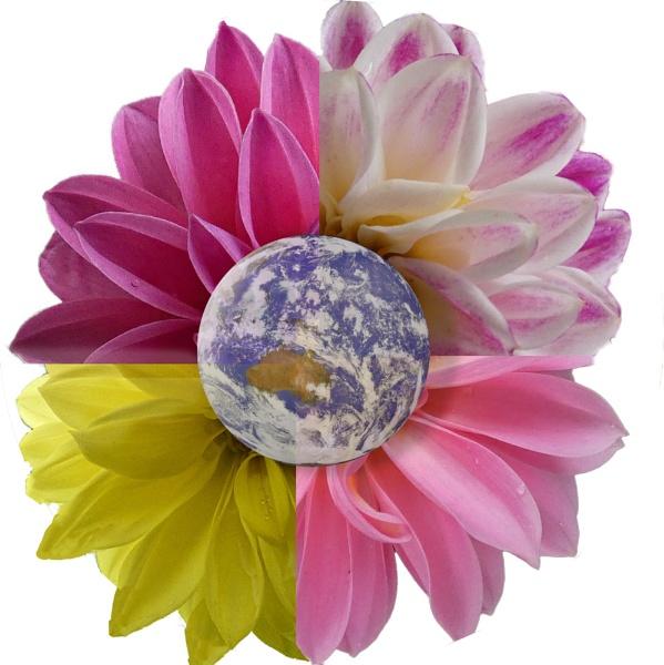 Earth flower by EG