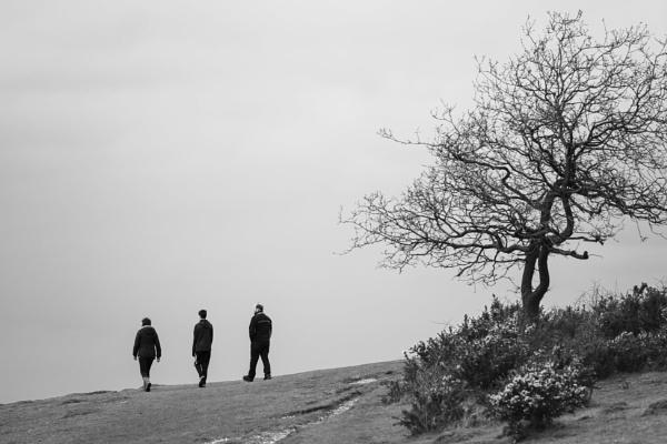 Three by rnmchinnor
