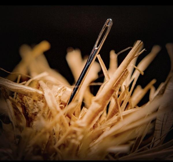 Needle In A Haystack by deejay10
