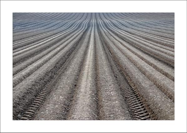 Plough Lines by Steve-T