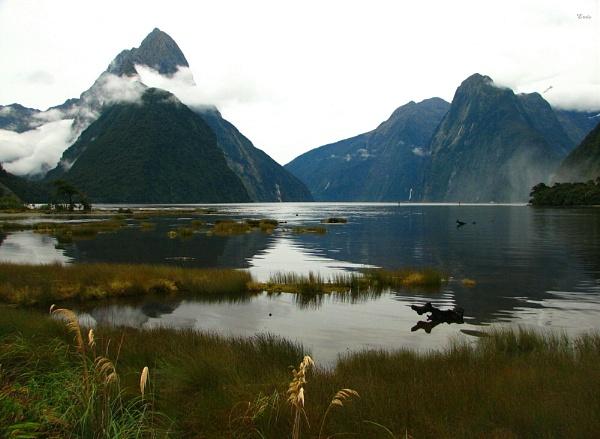 Milford Sound 25 by DevilsAdvocate