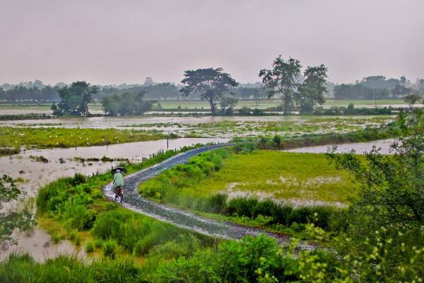 Rural milieu by Shibram