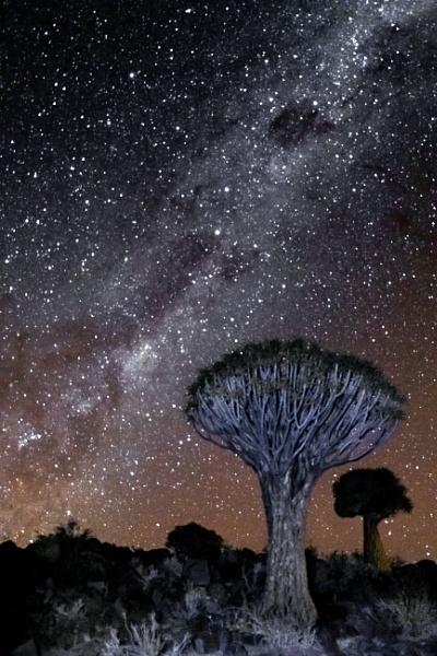 Namibian Nights by Jasper87