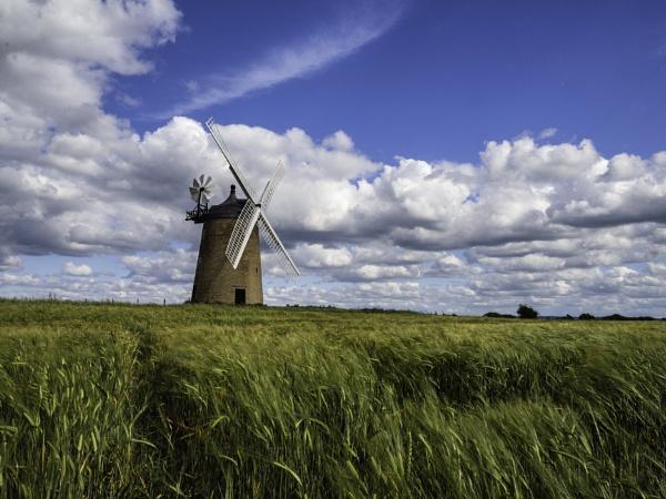 Great Haseley Windmill by CraigWalker