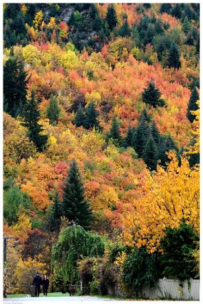 Autumn in Arrowtown by TT999
