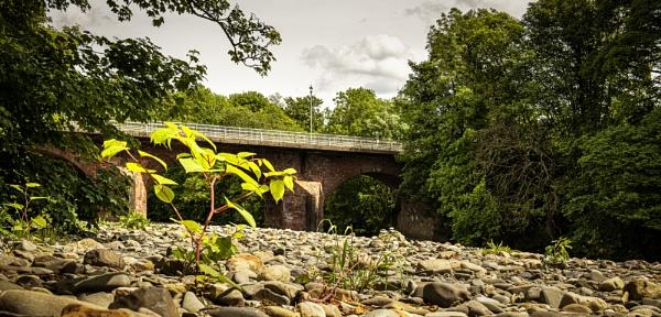 Canonbie Bridge by TrotterFechan