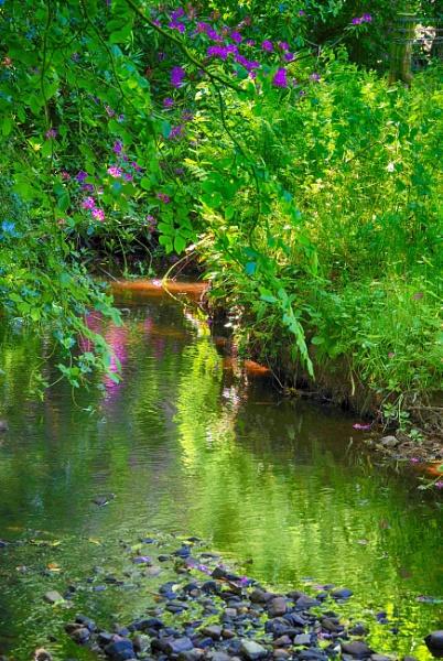 Babbling Brook by Backabit
