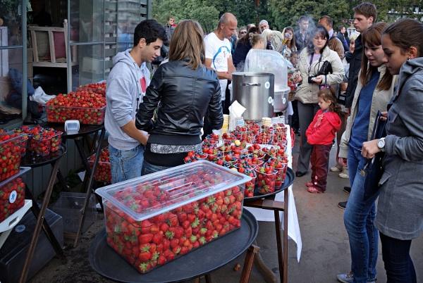 straw_berries by leo_nid