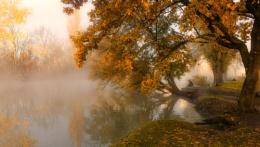 Fisherman and autumn