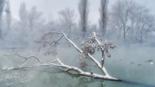 Winter morning by Aleksandr_Plekhanov