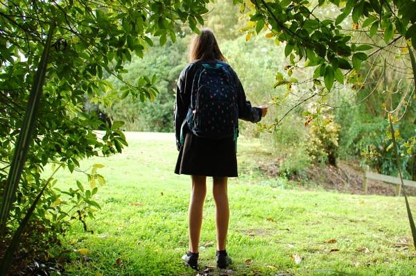 Girl in the Bush Remade by heyitshenry