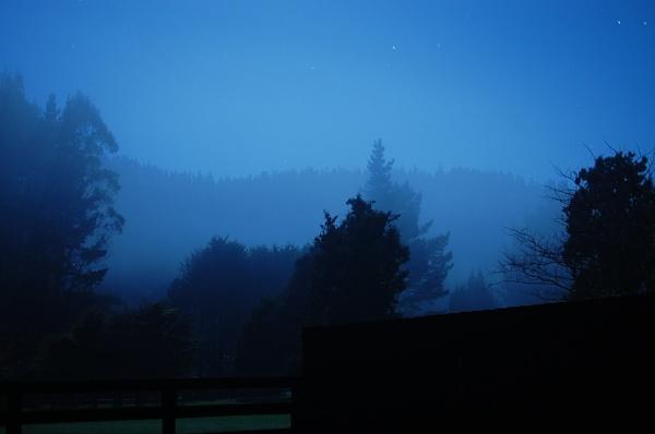 Blue Fog by heyitshenry