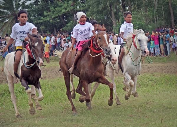 Horse race by Shibram