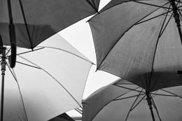 Photo : Parasols or umbrellas?
