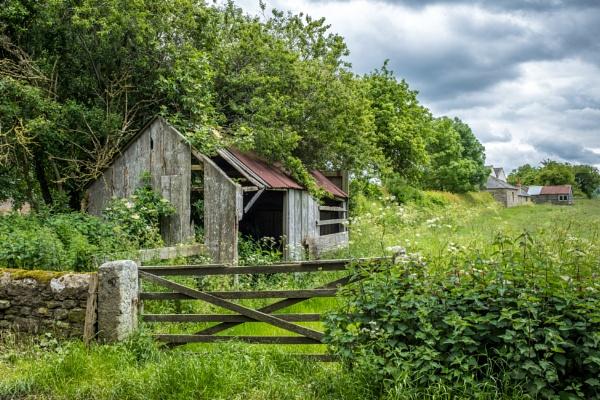 Forgotten Garden by mbradley