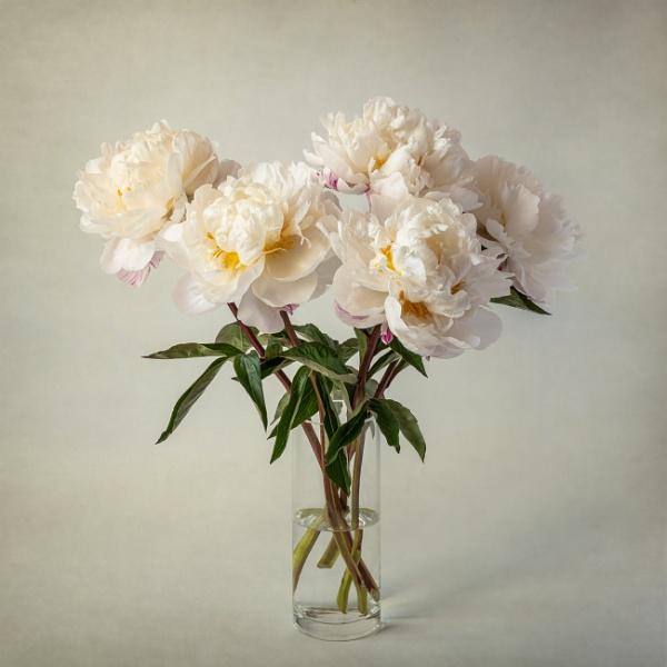 Blousy by flowerpower59
