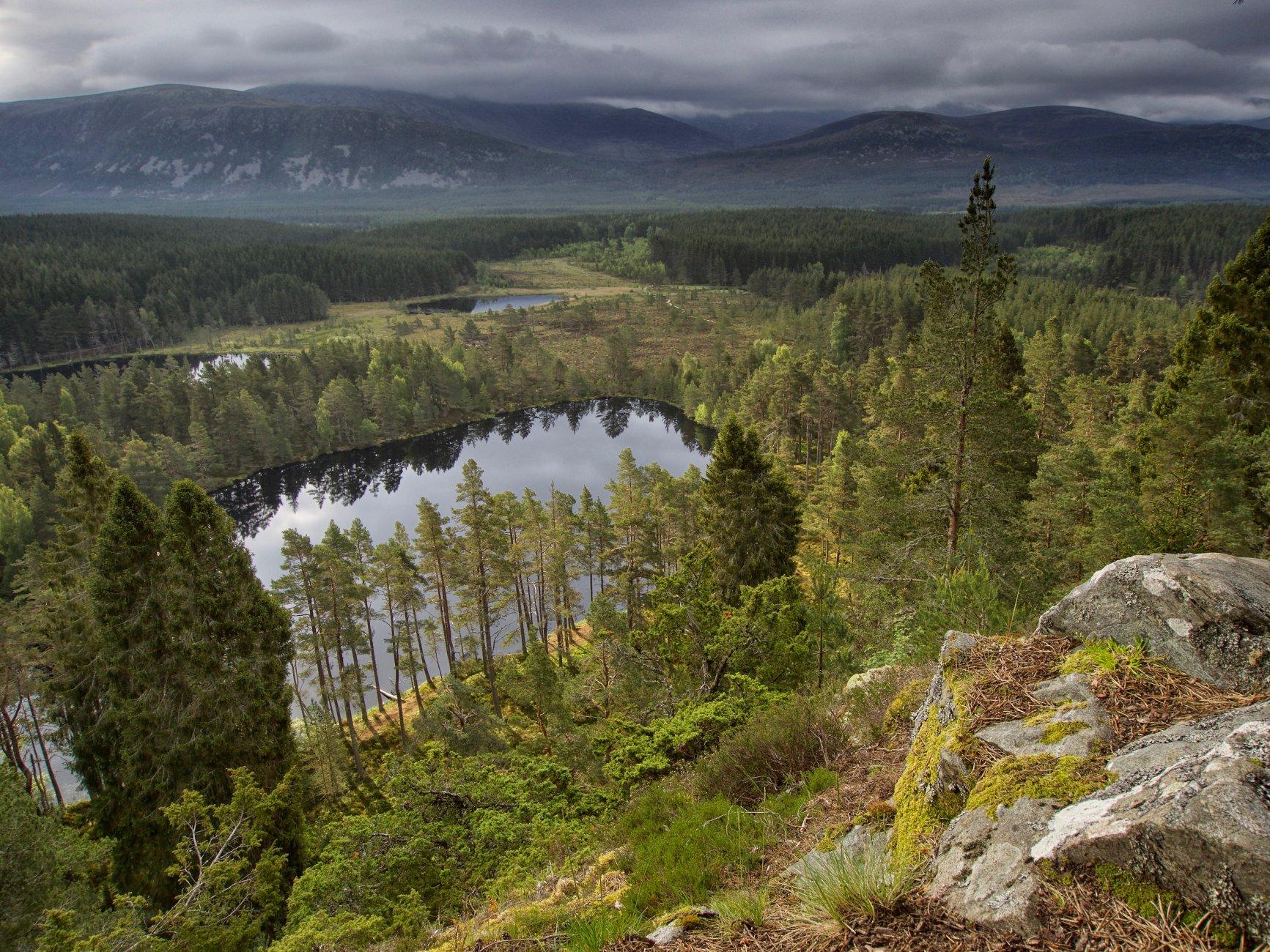 Bear's Paw Lakes