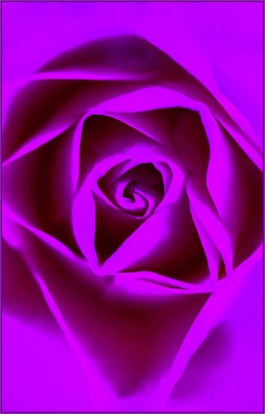 rosebud rising... by estonian