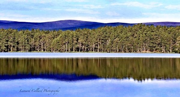 Loch Garten by Lencollard