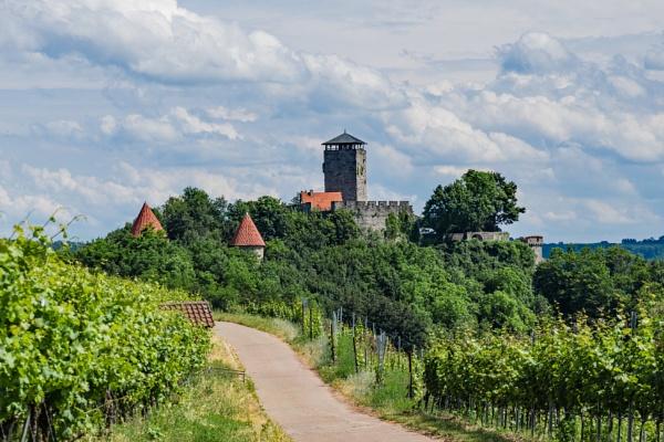 Castles and vineyards by aldasack1957