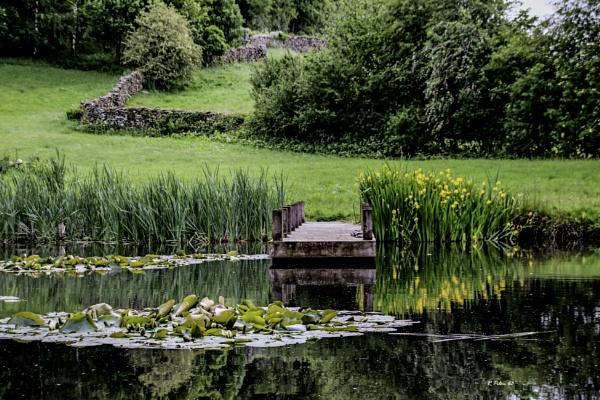 Little pond by RPilon63