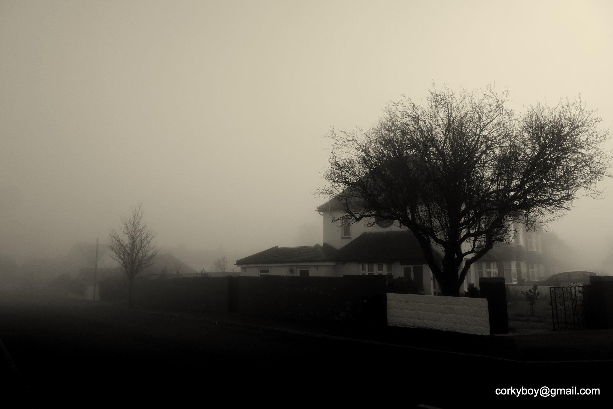 Suburban mist.