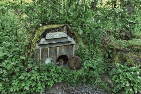 Little house by BillRookery